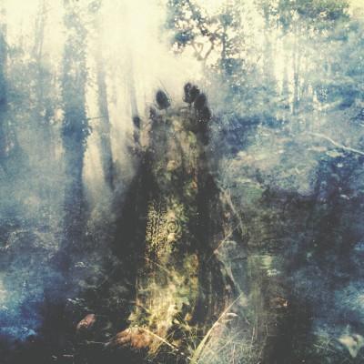 Sylvaine – Wistful