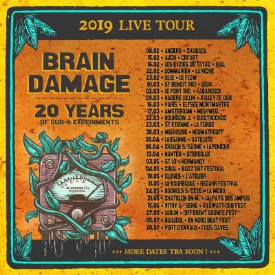 Brain Damage – Tournée des 20 ans et un remix de Zenzile
