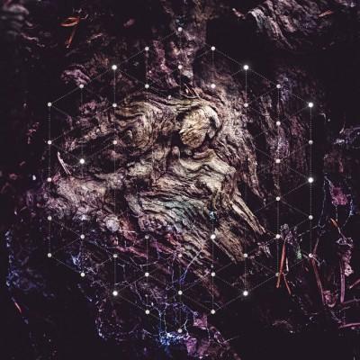 Psychonaut – Kabuddah