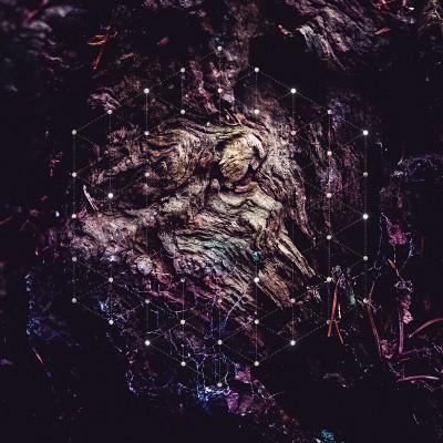 Psychonaut – Unfold the God Man