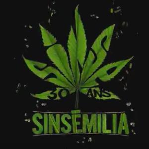 Sinsémilia – Je préfère 100 Fois – 30 ans