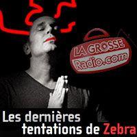 em-zebra-tentations-34